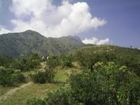 Zona Reservada Bosque de Zárate