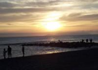 Beach Los Pavos