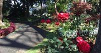 Jardim do Hospício Princesa D. Maria Amélia