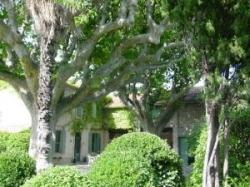 Hostal Le Mas Ferrand,Graveson (Bouches du Rhone)