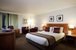 Hotel Crowne Plaza Heathrow