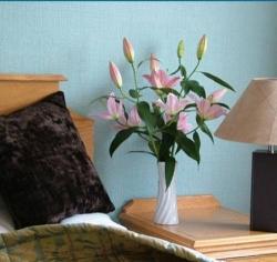 Hotel Best Western Hotel Gleneagles,Torquay (Devon)