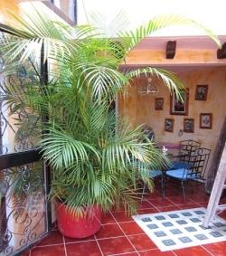 Hostal Casa Mexicana,Guanajuato (Guanajuato)
