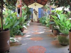 Hotel El Raizon,Masatepe (Masaya)