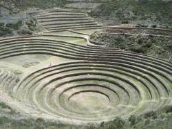 """cuzco single personals Trayecto en tren valle sagrado-aguas calientes-cuzco en servicio """"expedition por lo que he leído podemos escribir por si se forman grupos para viajeros single."""