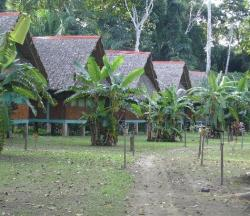 Albergue Tambo Jungle Lodge