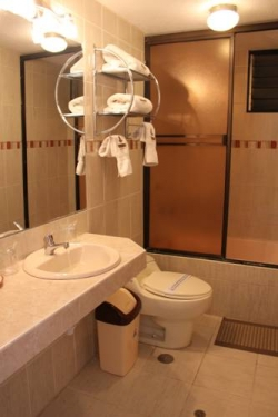Hotel Balsa Inn,Puno (Puno)